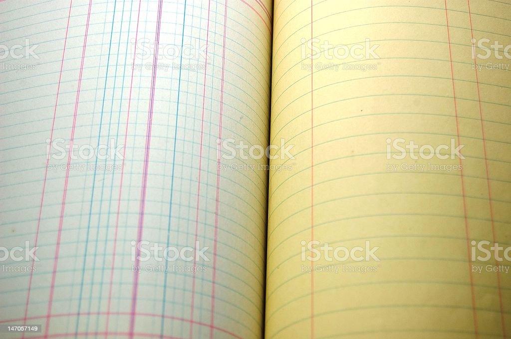 Accounting Ledger Sheet stock photo
