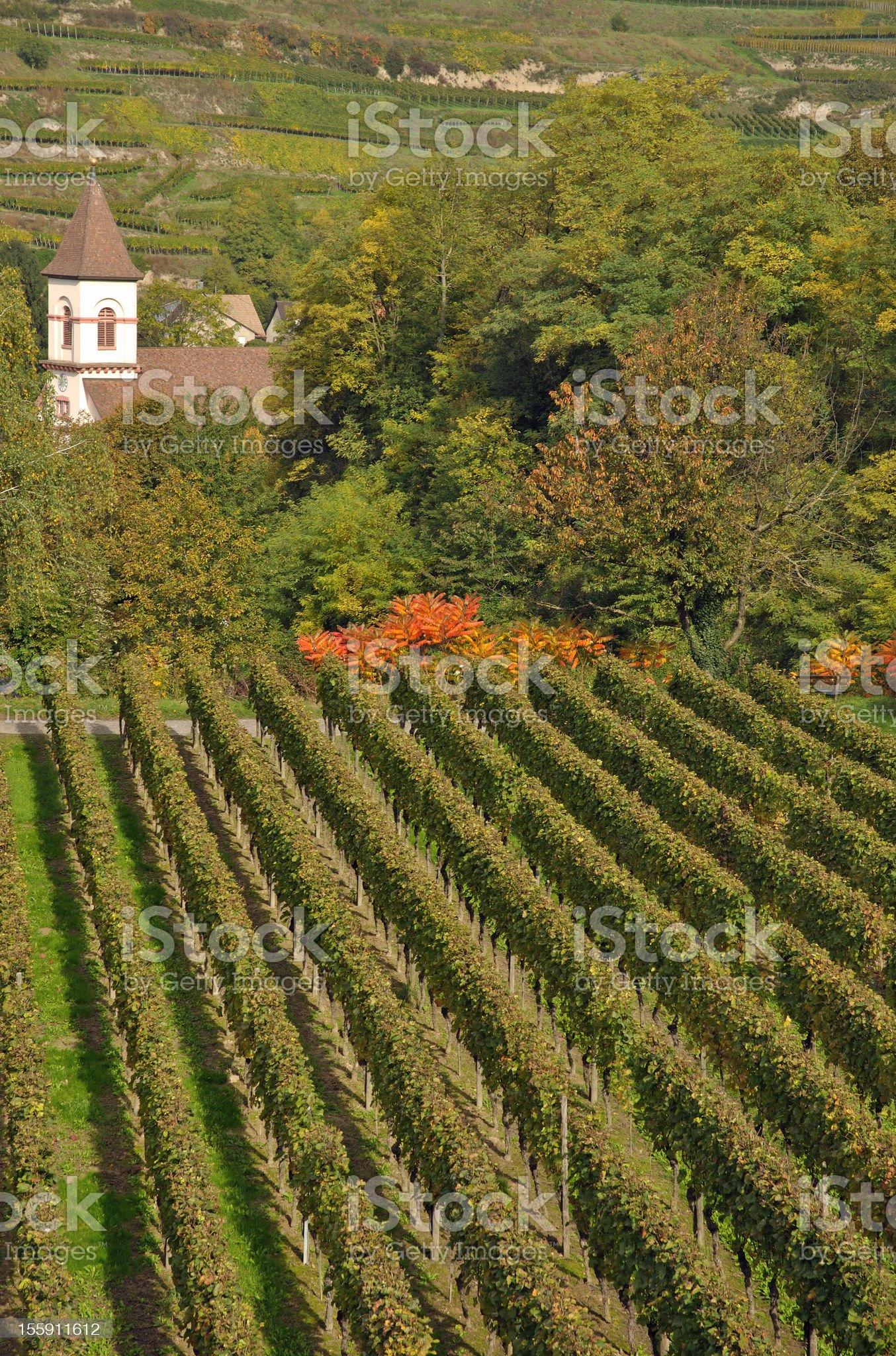 Achkarren,Kaiserstuhl Region,Black Forest royalty-free stock photo