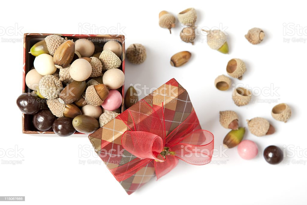 Acorn And Candy Box royalty-free stock photo