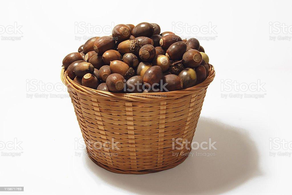 Acorn Basket royalty-free stock photo