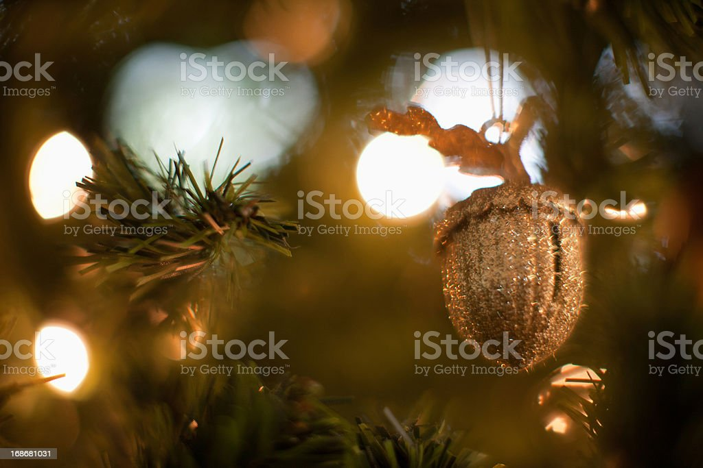 Acorn Christmas ornament royalty-free stock photo