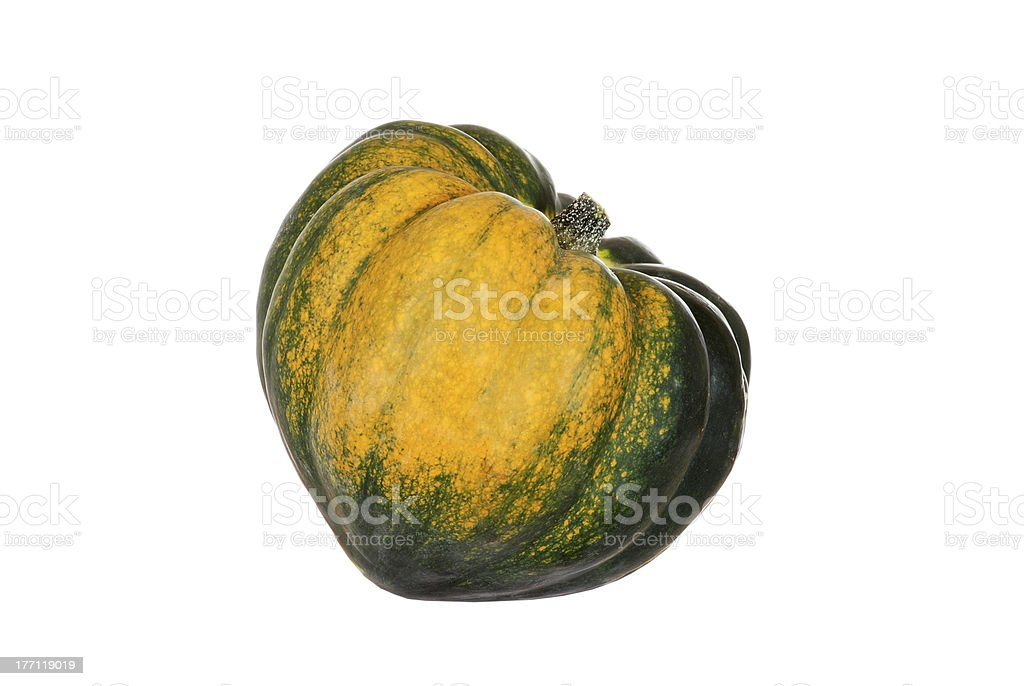 acorn pepper squash royalty-free stock photo