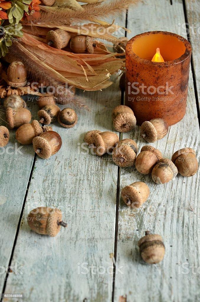 Acorn Seeds of the Autumn Season stock photo
