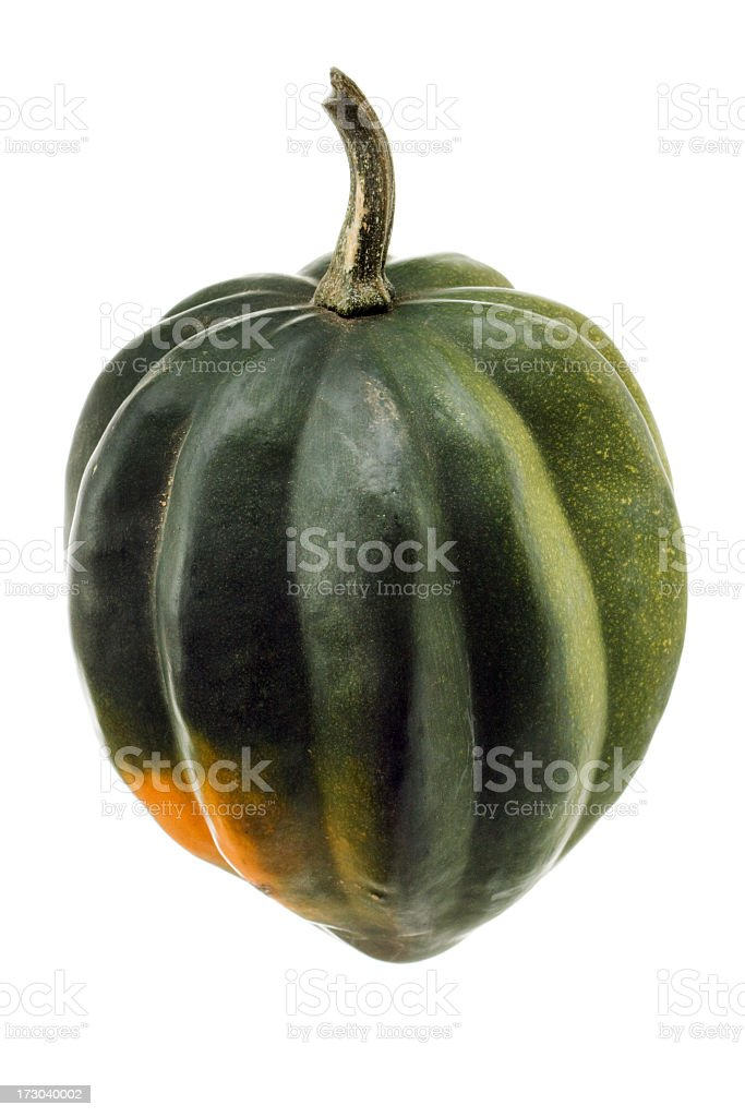 Acorn Squash, a Raw, Fresh, Green Autumn Vegetable, on White stock photo