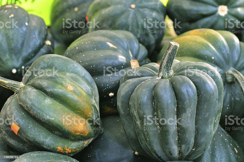 Acorn Squash stock photo