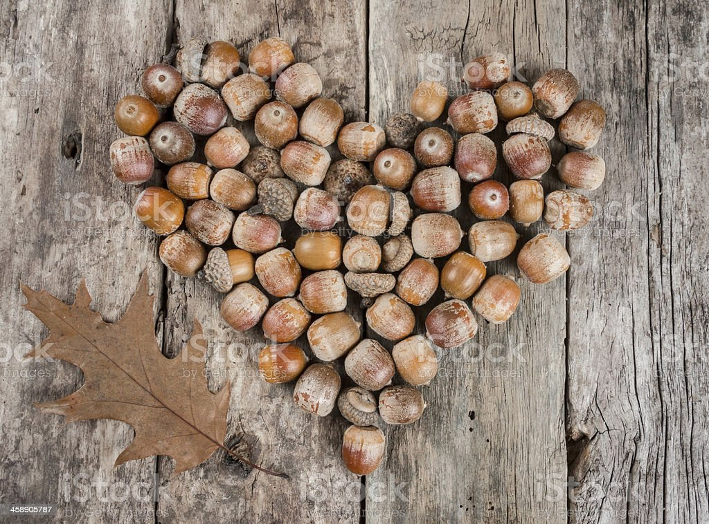 Acorns forming a heart on wooden background royalty-free stock photo