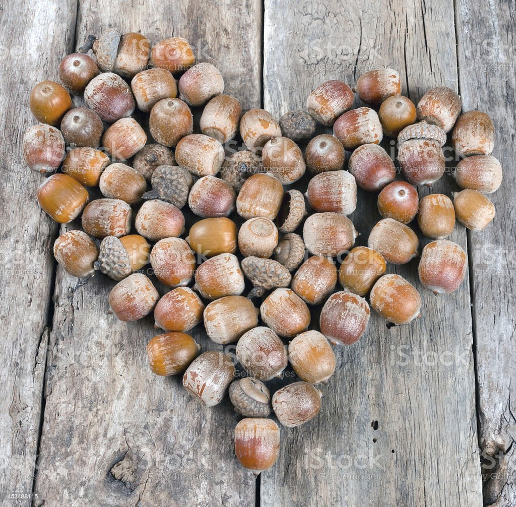 Acorns forming heart on a wooden background royalty-free stock photo