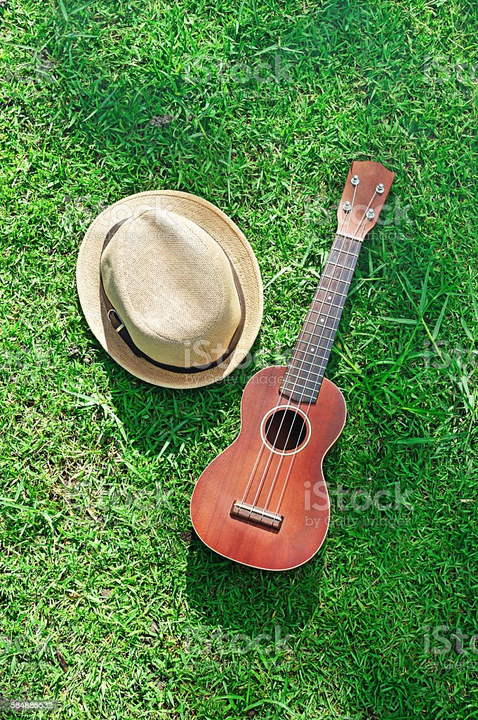Acoustic ukulele with hat on green grass stock photo