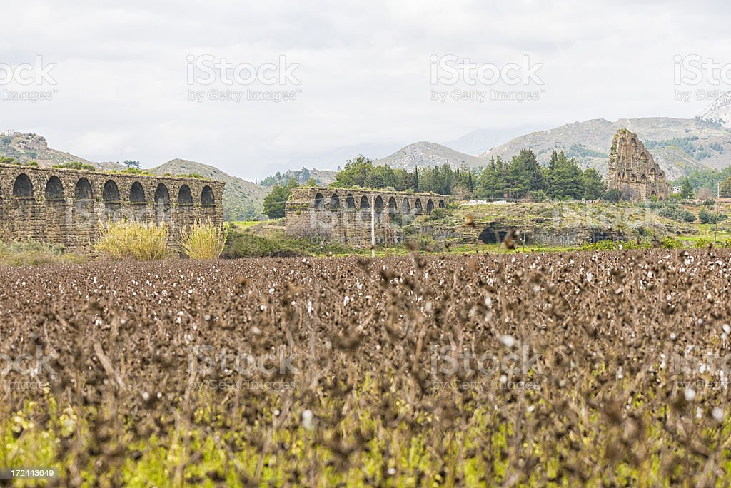 Acquaduct of Aspendos and cotton field royalty-free stock photo