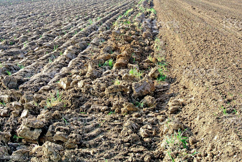 acre prepared for sowing royalty-free stock photo