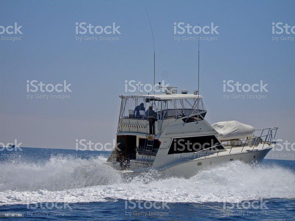 Action at Sea royalty-free stock photo