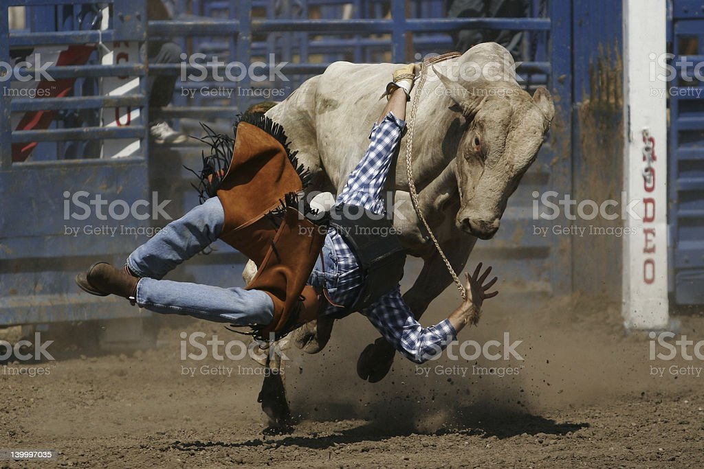 Action Bull Rider Falling stock photo