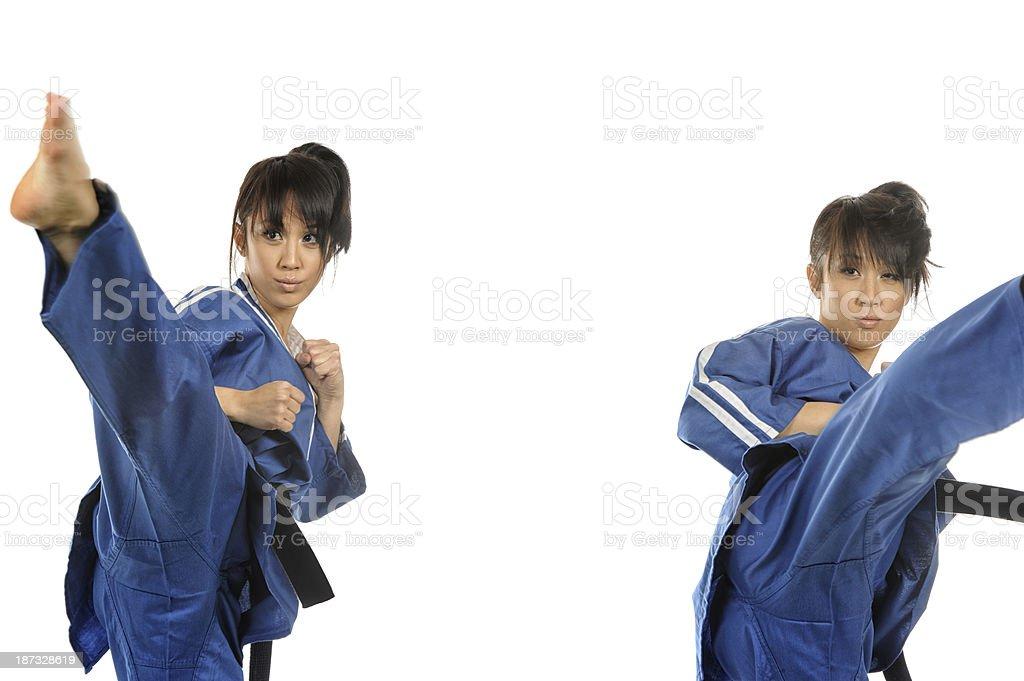 Action Martial Arts royalty-free stock photo
