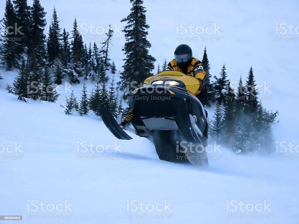 Action Shot - Ski Doo royalty-free stock photo