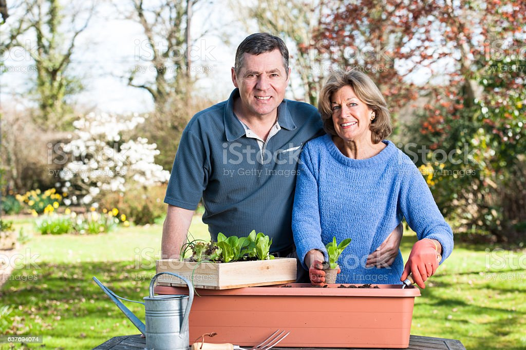 Active And Happy Senior Couple Enjoying Gardening Together stock photo