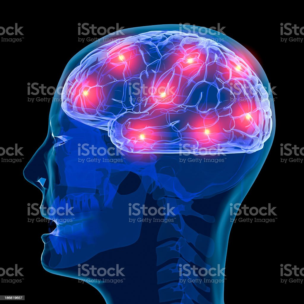 Active brain royalty-free stock photo