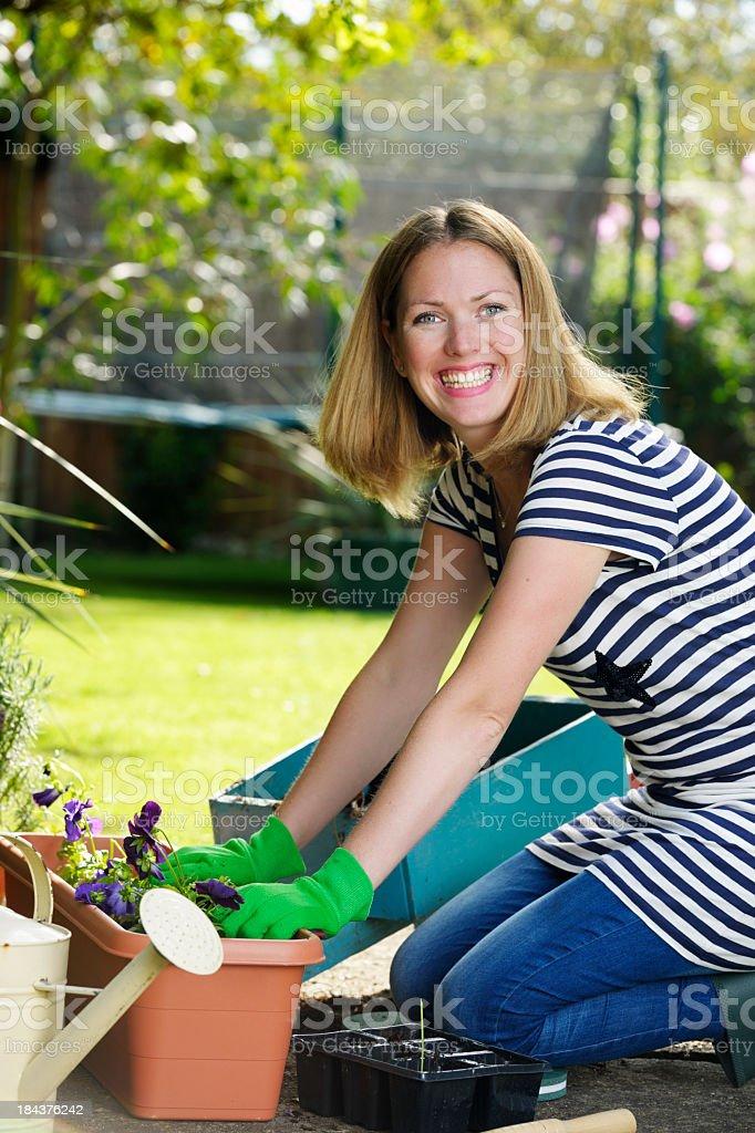 Active Housewife/ Woman Kneeling While Gardening stock photo