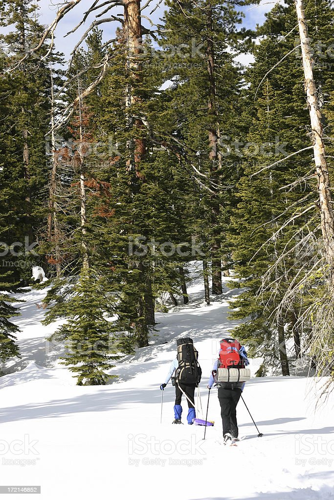 Active in the Snow royalty-free stock photo