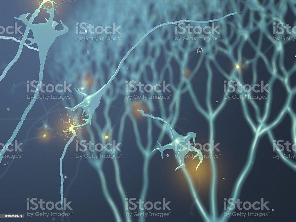 Active Neurone royalty-free stock photo