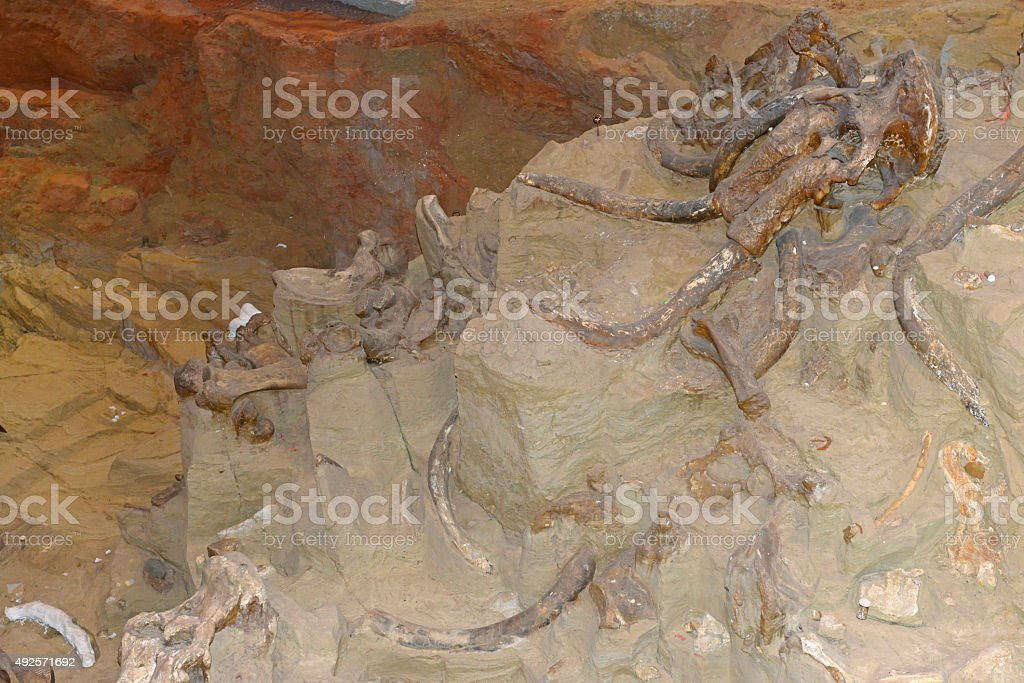 Active paleontological Mammoth dig site in Hot Springs, South Dakota stock photo