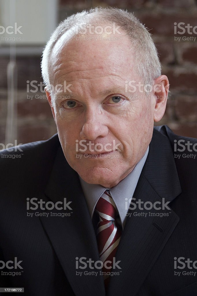 Active Senior Adult Businessman Portrait at Office royalty-free stock photo