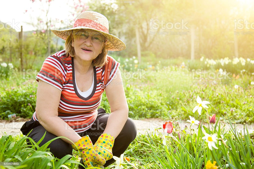 Active Senior Woman Gardening stock photo