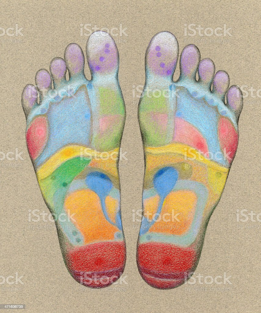 Acupressure Foot Massage Chart stock photo