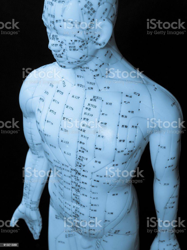 Acupuncture Concept royalty-free stock photo
