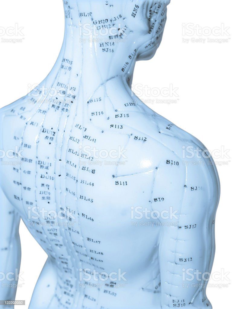 Acupuncture doll stock photo