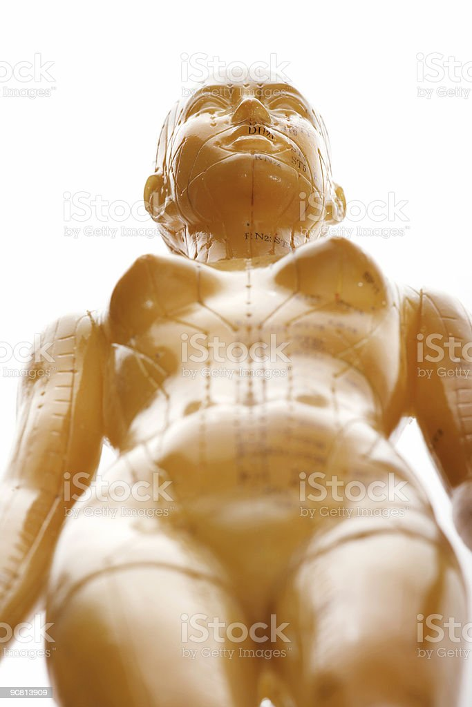 Acupuncture female model from below royalty-free stock photo