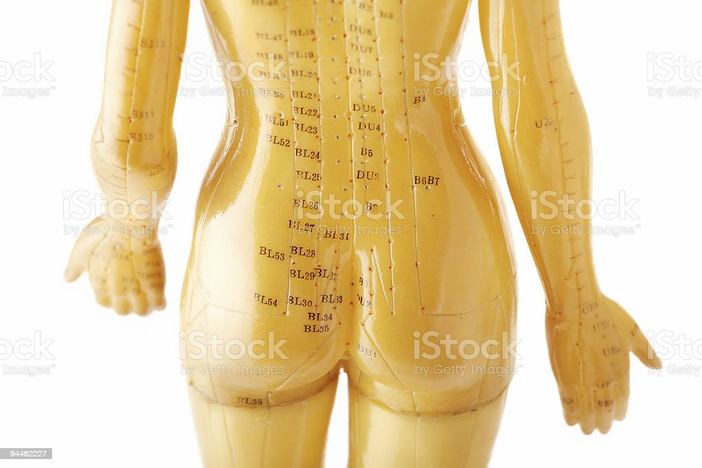 Acupuncture female model from the back royalty-free stock photo