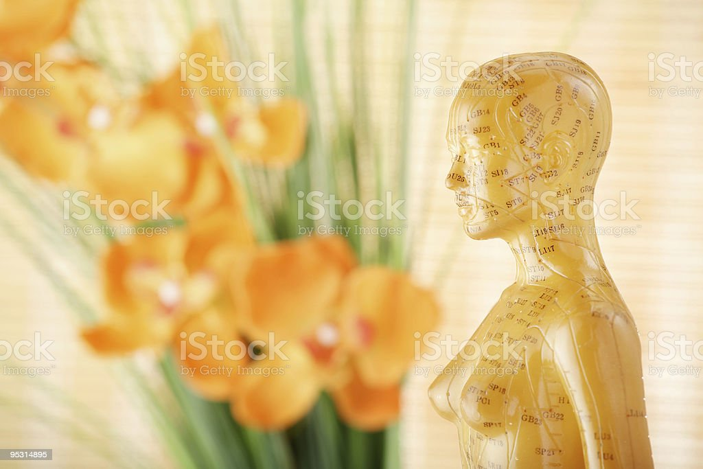 Acupuncture female model royalty-free stock photo