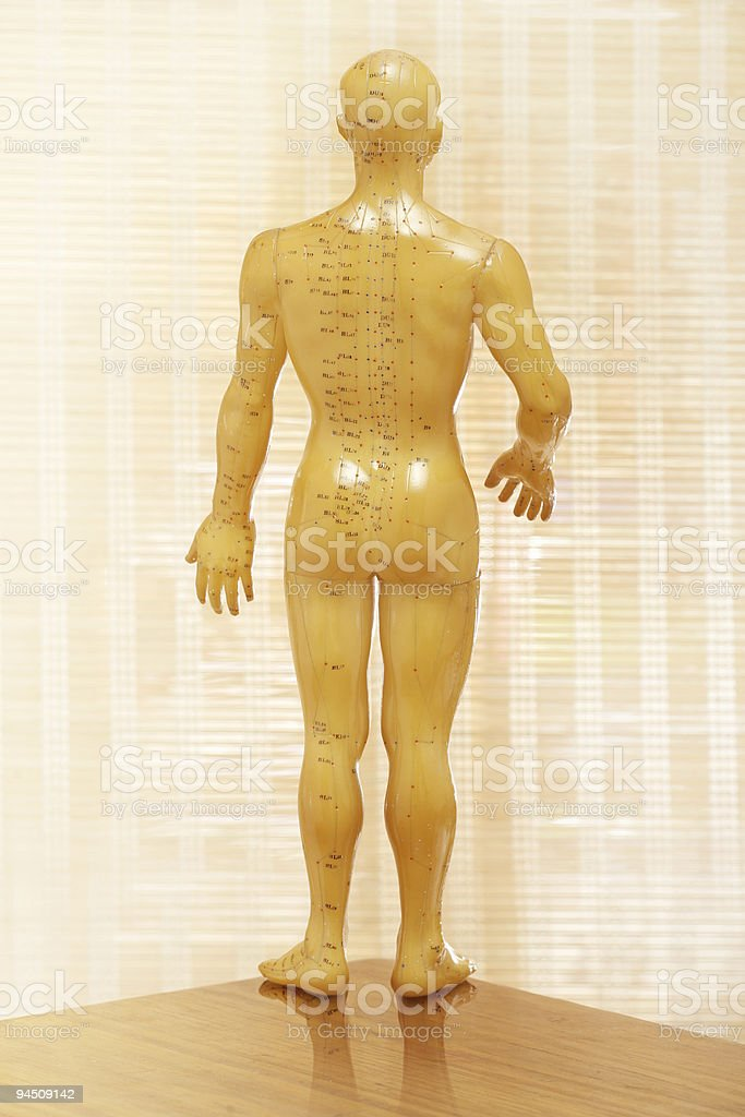 Acupuncture male model backside royalty-free stock photo