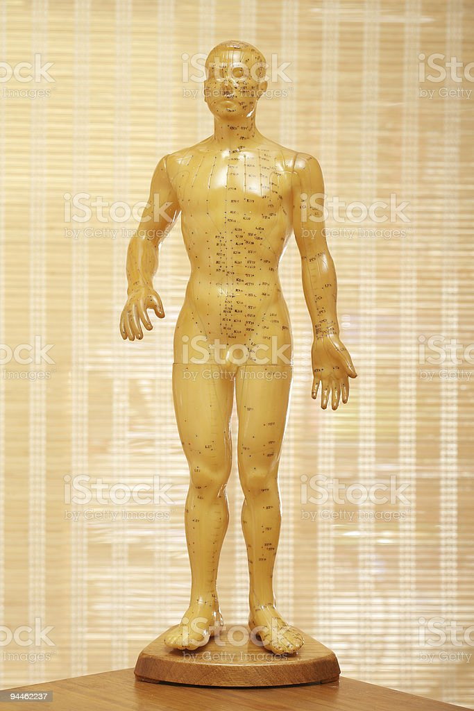 Acupuncture male model body royalty-free stock photo