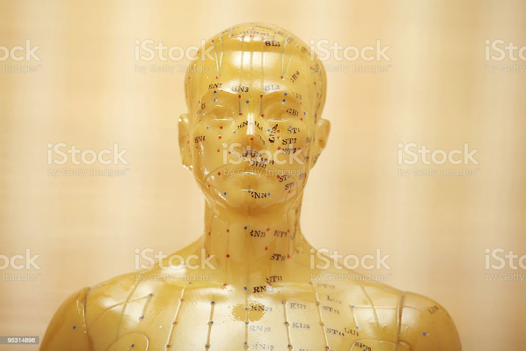 Acupuncture male model head royalty-free stock photo