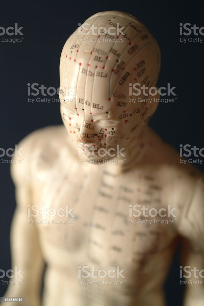 Acupuncture (head and body) stock photo