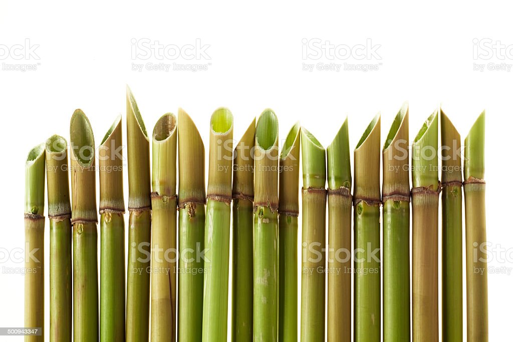 acute cane stock photo