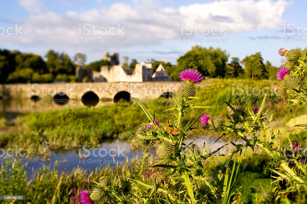 Adare, Ireland stock photo