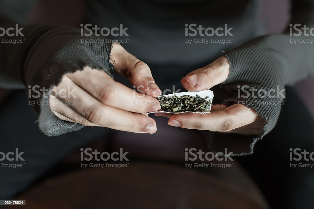 Addict hands making marijuana jamb closeup. stock photo