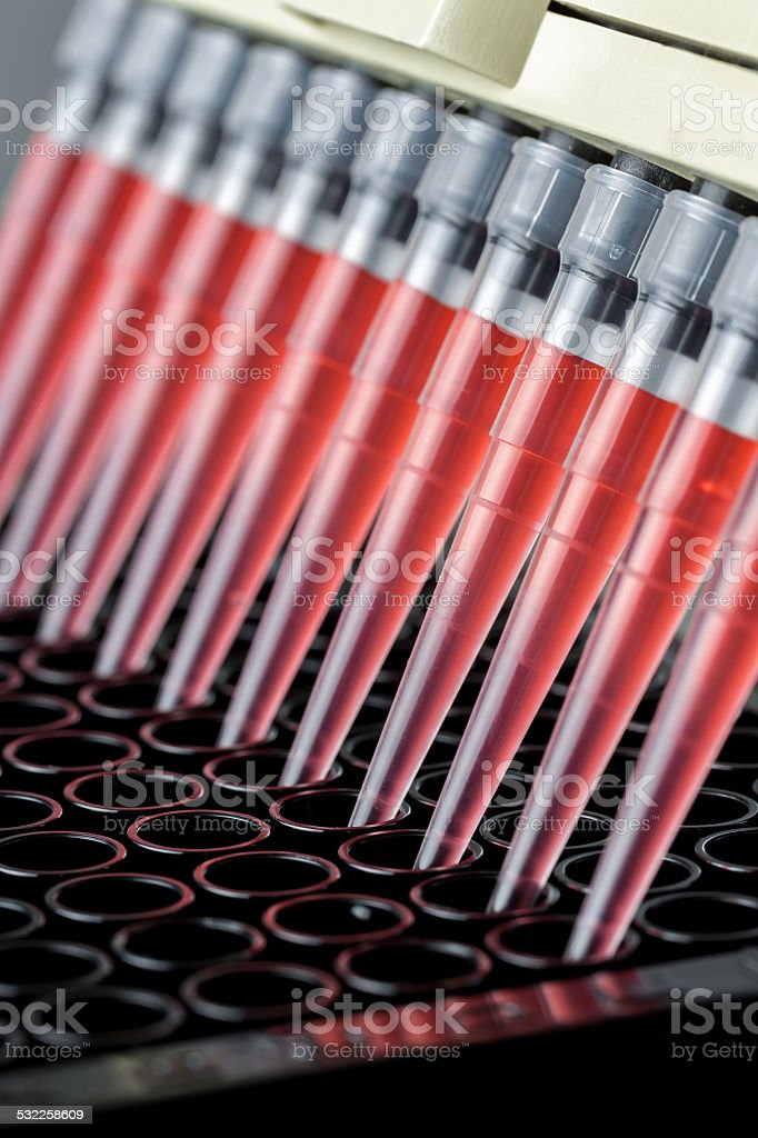 Adding samples to a 96 well plate stock photo