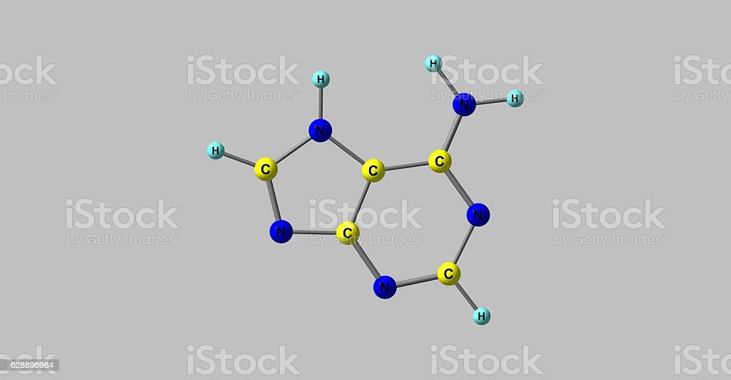 Adenine molecular structure isolated on grey stock photo