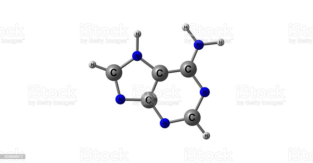 Adenine molecular structure isolated on white stock photo