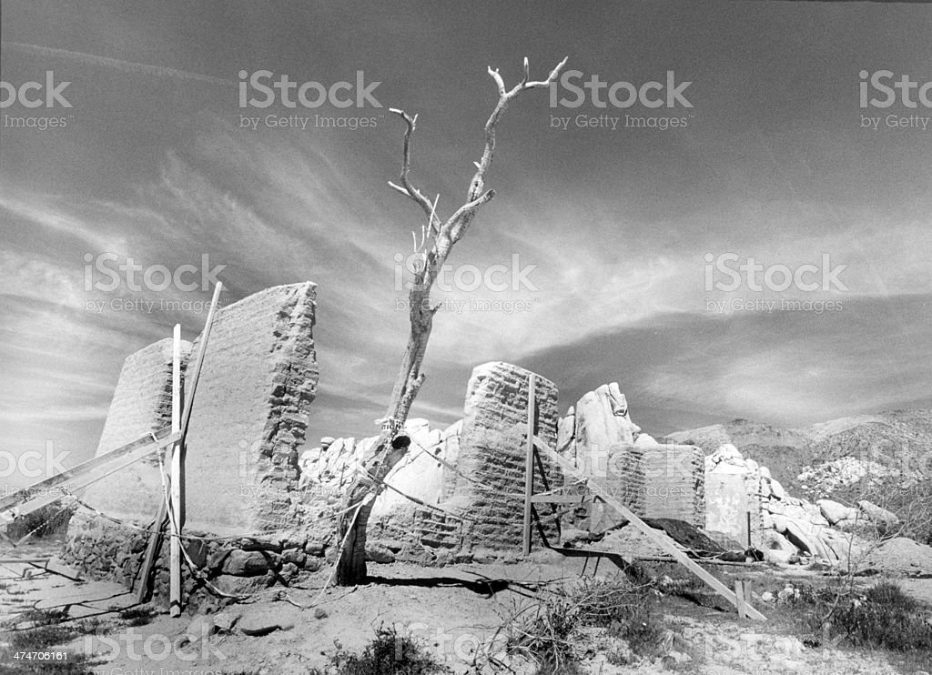 Adobe House Ruins In Desert With Twisted Tree stock photo