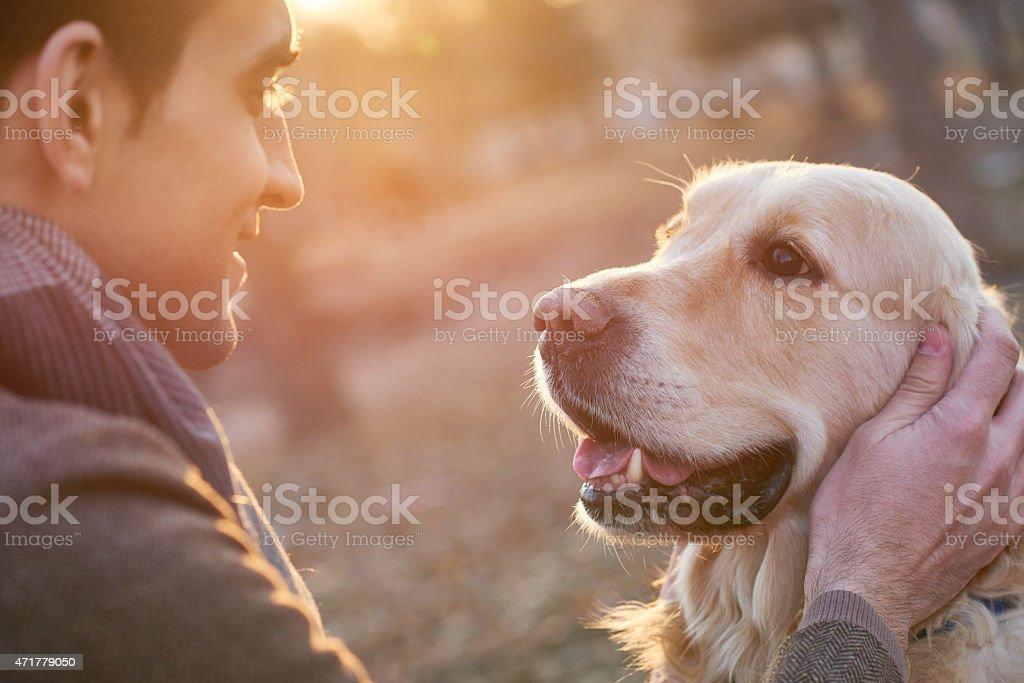 Adopting a dog stock photo