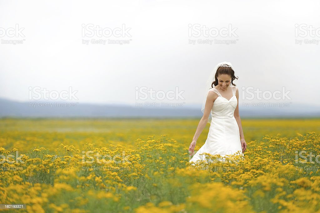 Adorable bride in nature royalty-free stock photo