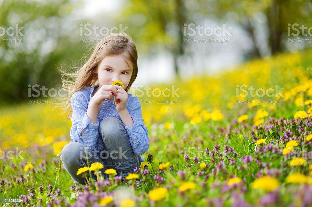 Adorable girl in blooming dandelion flowers stock photo