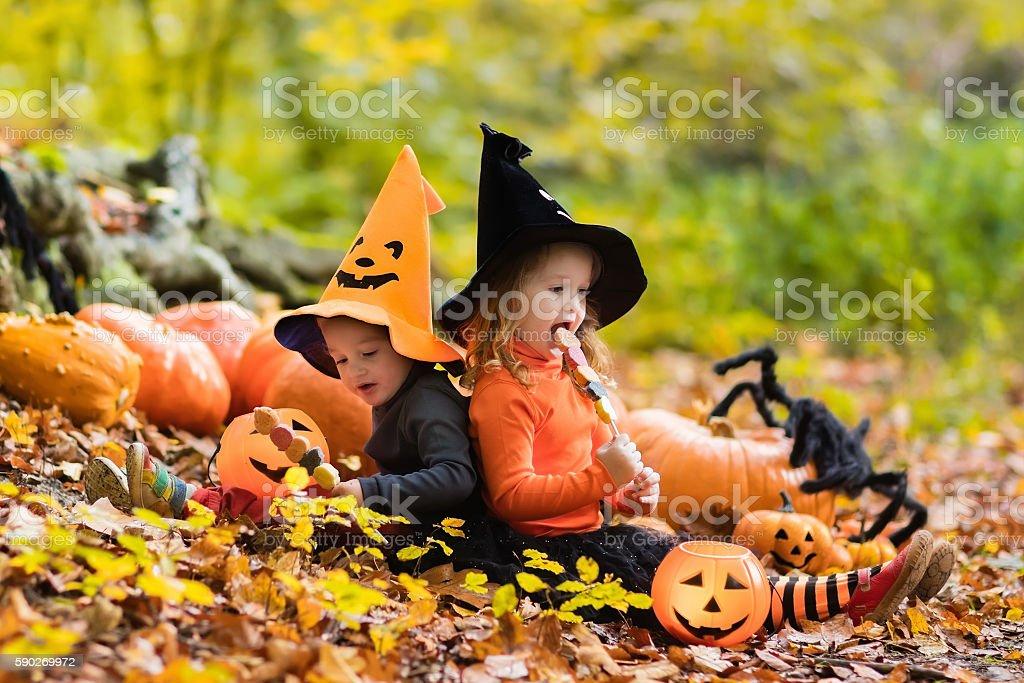 Adorable kids with pumpkins on Halloween stock photo