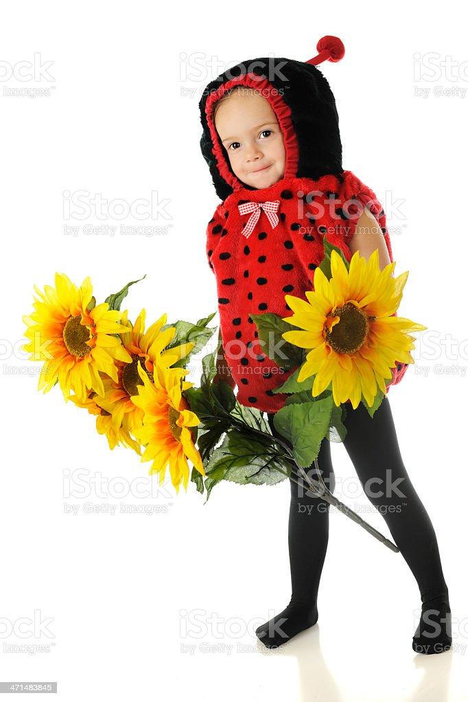 Adorable Ladybug royalty-free stock photo