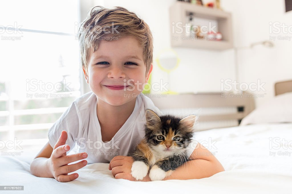 Adorable little boy and his kitten! stock photo
