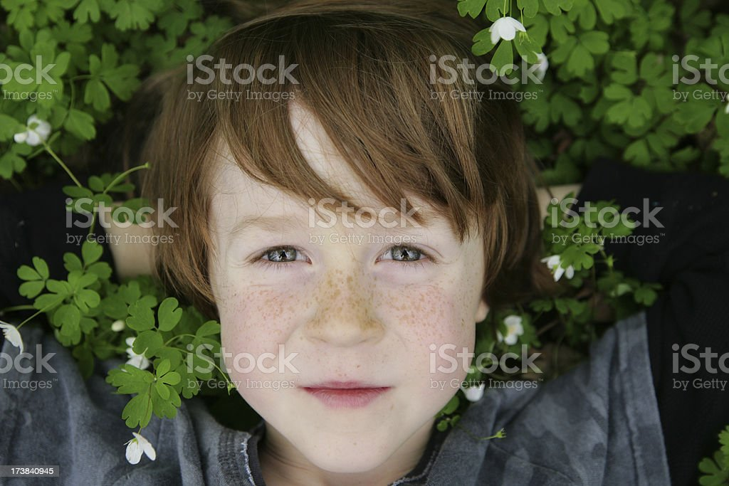 Adorable Little Boy Resting in Wildflowers- Anemone royalty-free stock photo